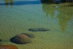 20120422_LakeTahoe-230